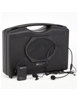 Portable wireless dual sound system with 16-channel wireless receiver