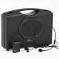 Portable wireless dual sound system comes with three microphones