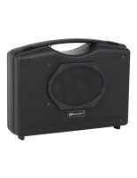 Portable personal sound system has convenient carrying handle