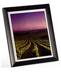 "8"" x 10"" Matted Picture Frame with Easel Backer"