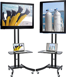 Portable TV stands with shelves