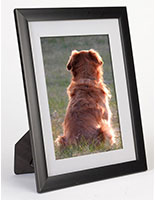 Mat Picture Frame with Black Polystyrene Plastic Molding