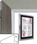 Poster Display Case