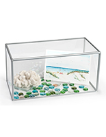 "Horizontal 10"" x 20"" acrylic collectible display"