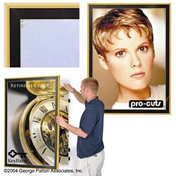 gold swinging poster frames