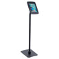 iPad Retail Kiosk with Steel Faceplate