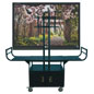 Flat Screen Cart with Dual Handles