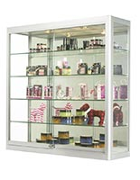 Wall mount display cases for spas and salons
