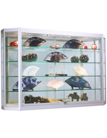 Wall Showcase Cabinet with LED Lights, Mirrored Backing
