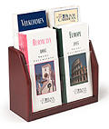 Two-Tiered Literature Holder