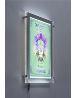 84d7ea049f8b 11 x 17 Wall Mounted Poster Frames- Great for any Commercial Setting