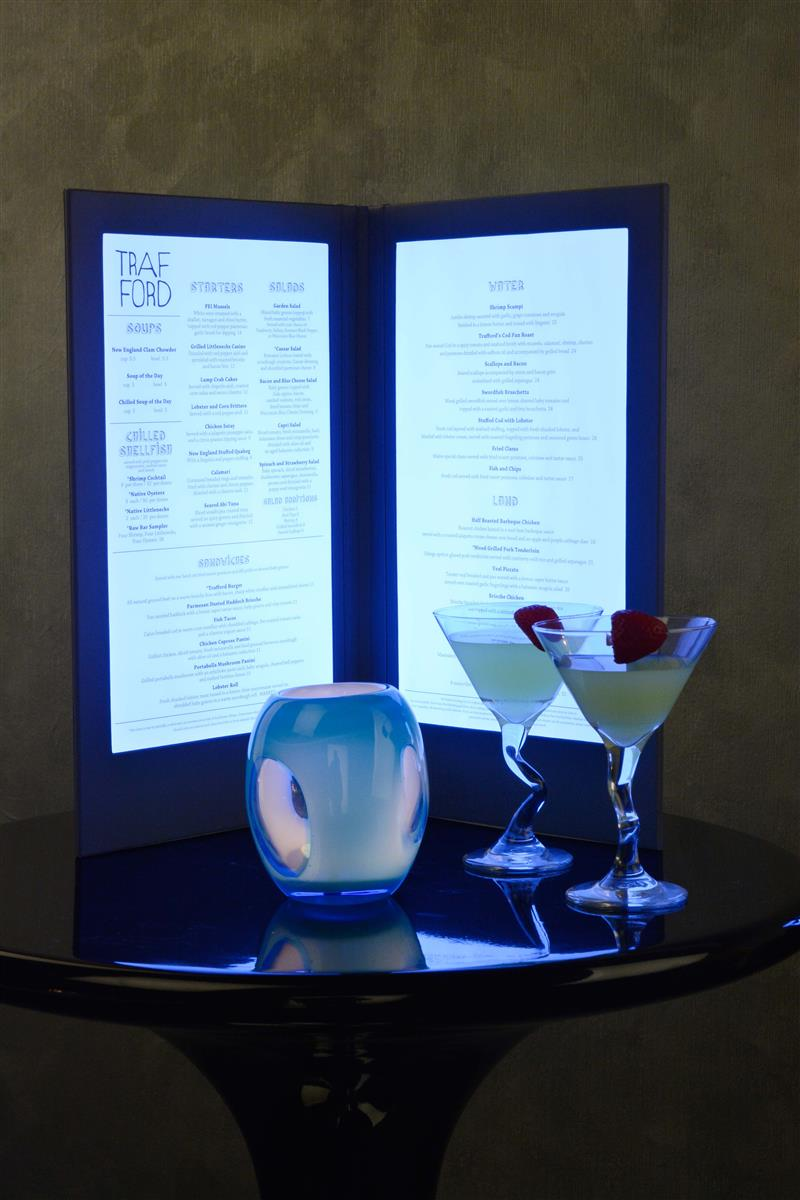 back lit menu display for 2 light up menu sheets. Black Bedroom Furniture Sets. Home Design Ideas
