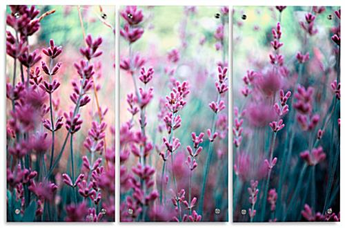 Acrylic Lavender Triptych Photograph