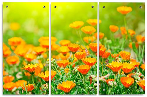 Triptych Floral Acrylic Wall Art Panels