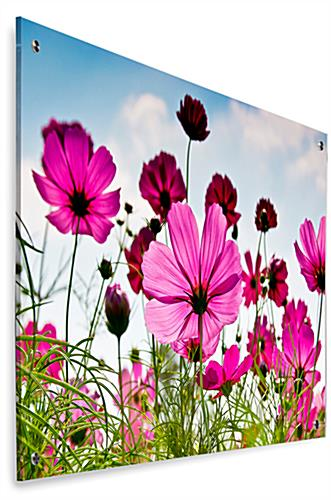 Floral Photo Acrylic Wall Art with Second Surface Application