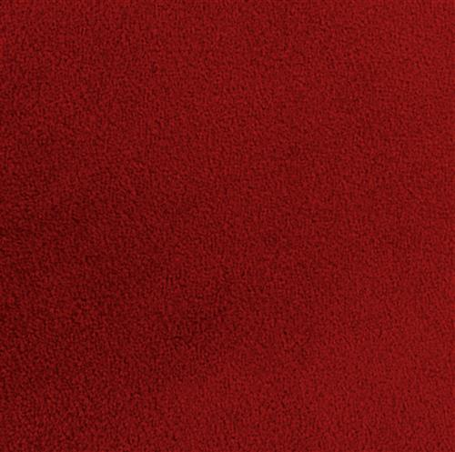 20' red carpet roll made of medium pile dirt resistant nylon fiber