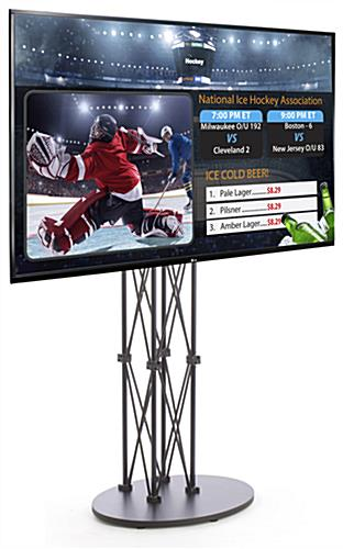 "55"" HDTV from LG Digital Signage Trade Show Kit"