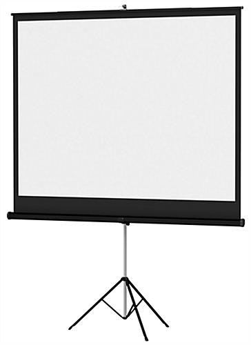 Cheap Projector Screen