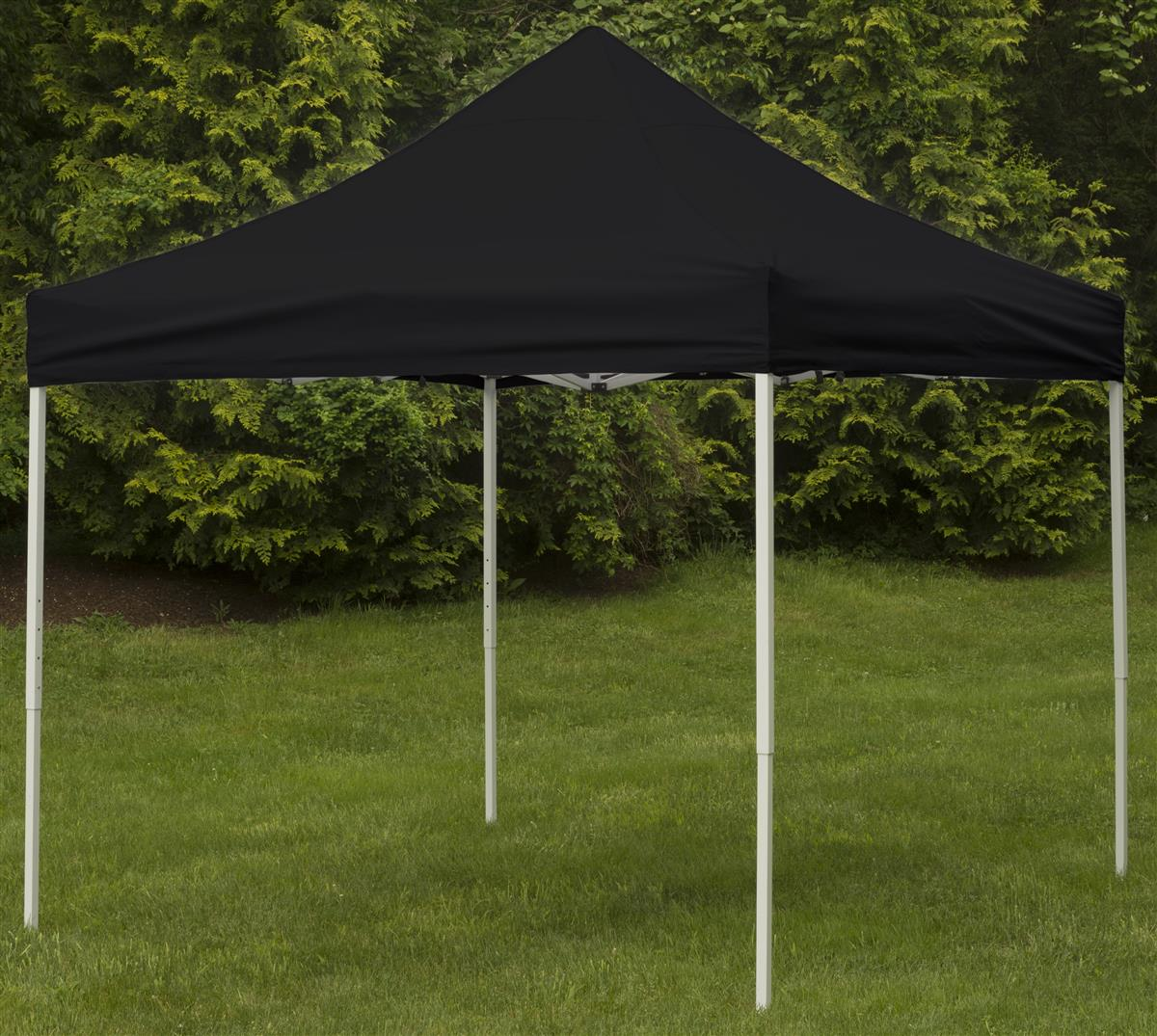 Portable Exhibition Tents : Tent canopy  square configuration