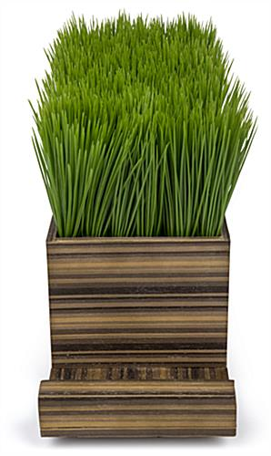 zebra wood potted grass device charger with clean lines