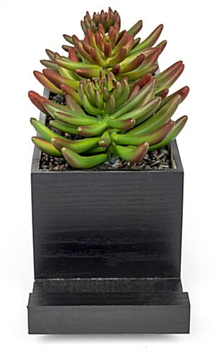 black succulents charging station planter with simple styling