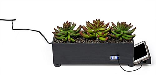 black succulents charging station planter with four USB ports