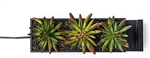 black succulents charging station planter with realistic greenery