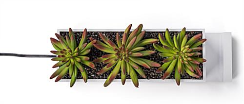 desktop power charging succulent planter with lifelike vegetation