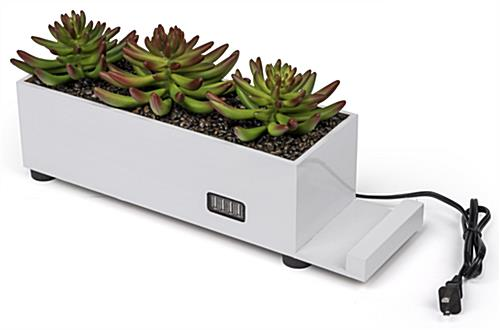 dual purpose desktop power charging succulent planter