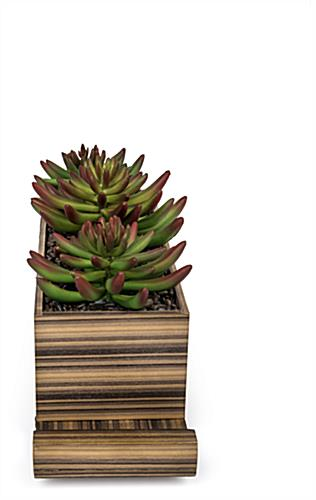 plastic succulents decorative charging planter with clean lines