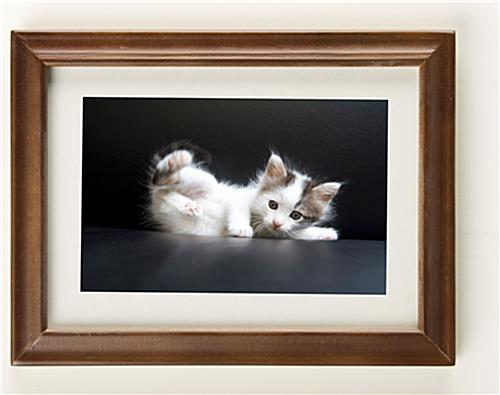 5 X 7 Wooden Picture Frames W Walnut Finish Amp White Mat