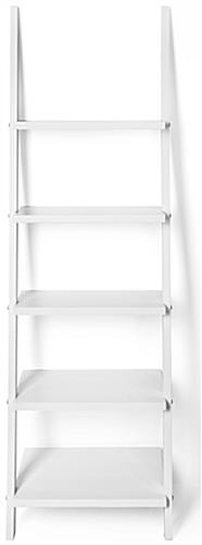 Leaning Ladder Shelves with Pine Construction