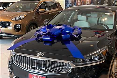 Metallic blue windshield bow for car hoods