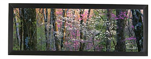 Panorama Photo Frame Black Holder For 24x8 Pictures