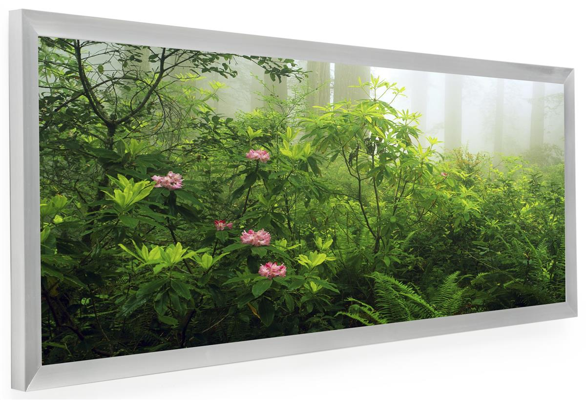 Silver Frame for Panoramic Print | 36x12 Display