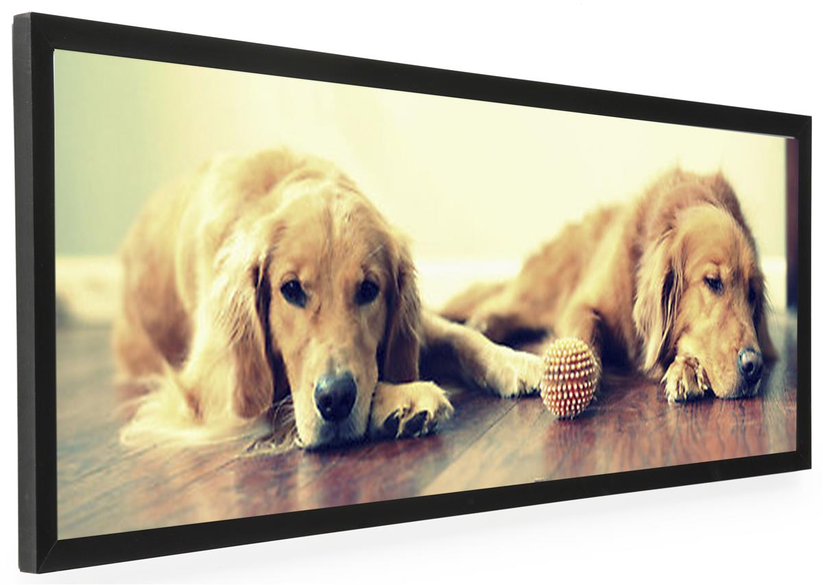Displays2go 40 x 13.5 Panoramic Picture Frame, Wall-Mount...