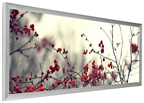 silver panoramic print frame 40x13 5 photo display. Black Bedroom Furniture Sets. Home Design Ideas